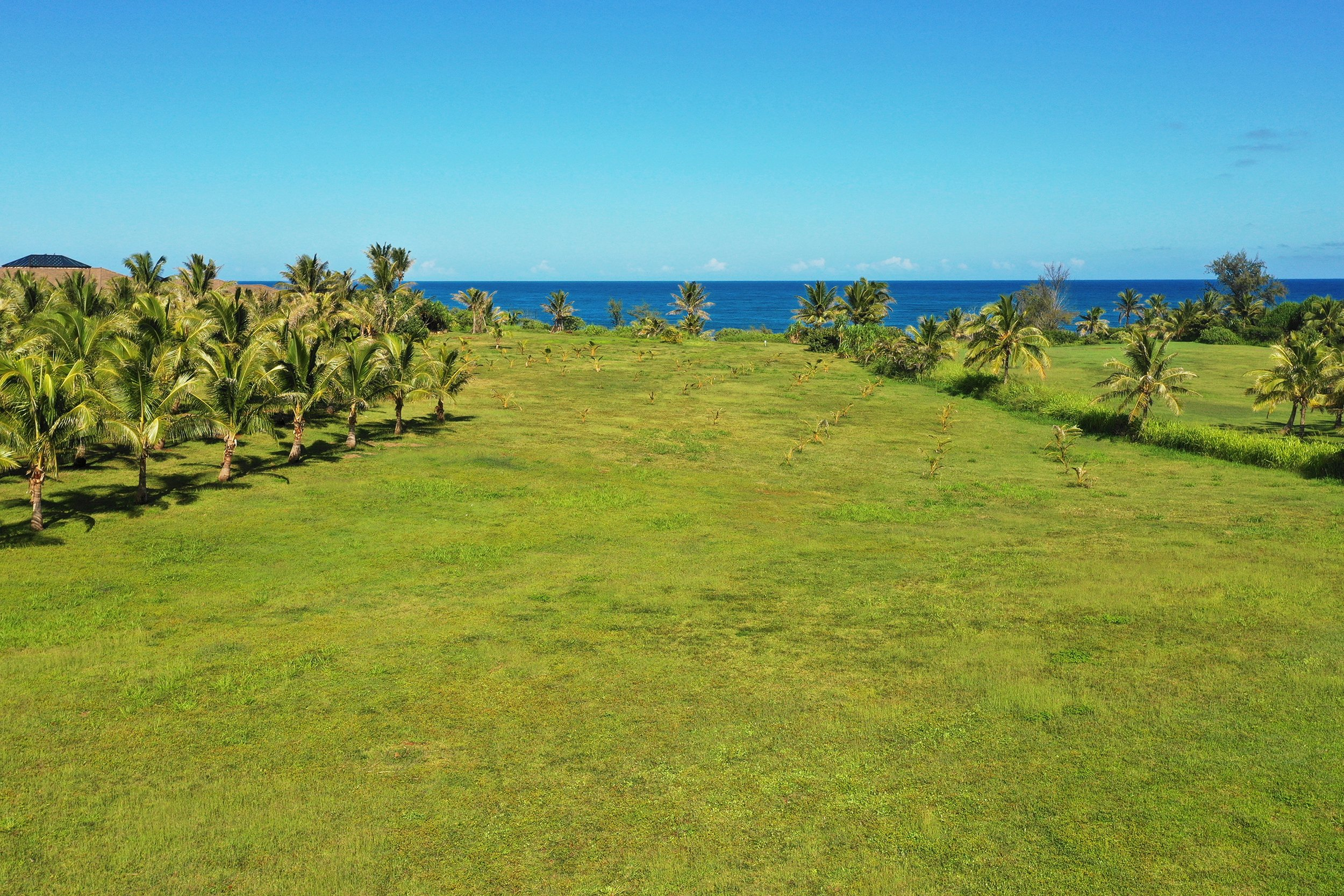 Land view of lot 18 of Kealia Kai on Kauai - Project Broker is Hannah Sirois