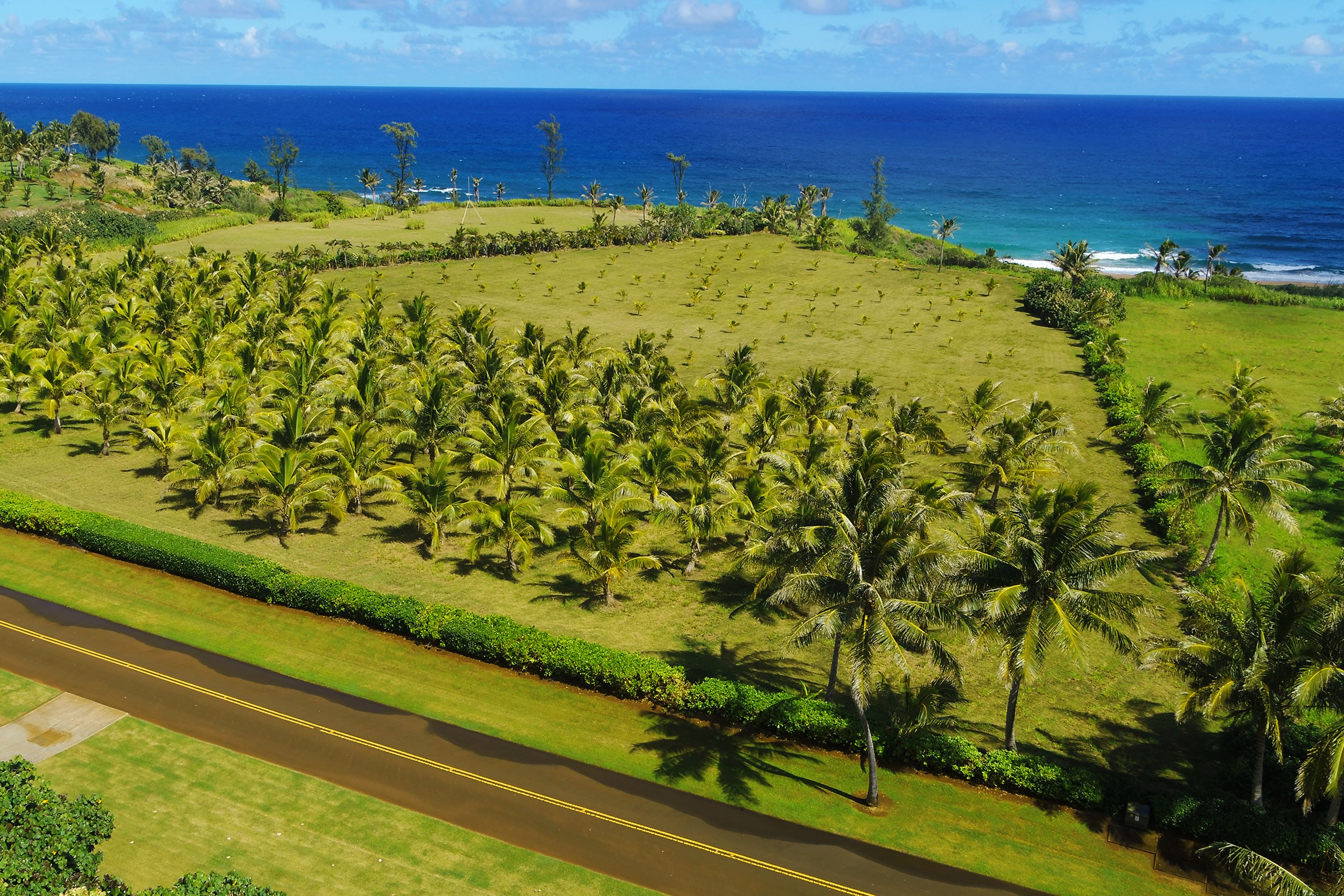 Aerial ocean view shot of lot 22 of Kealia Kai on Kauai - Project Broker is Hannah Sirois