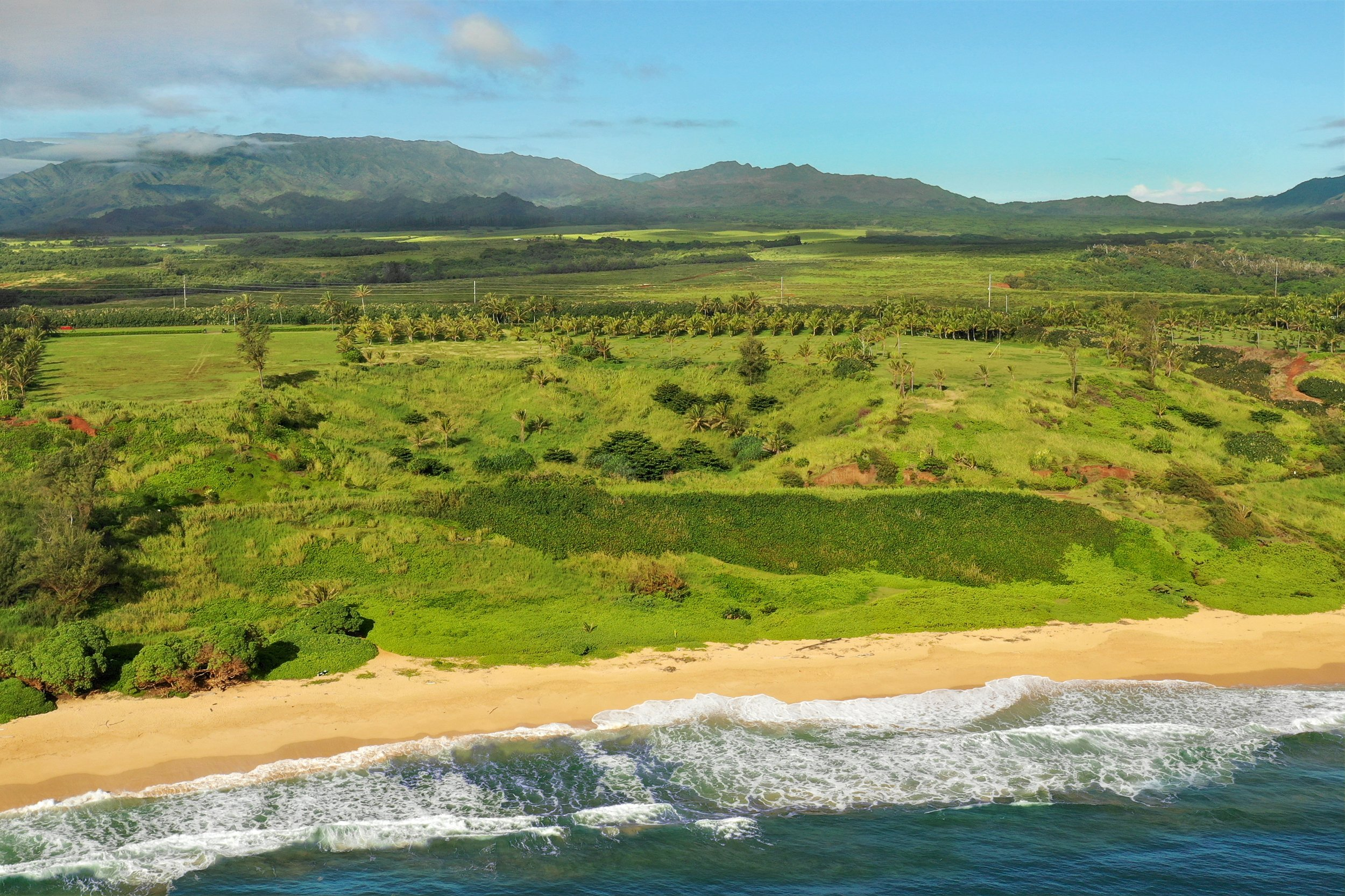 Aerial shot of lot 22 of Kealia Kai on Kauai - Project Broker is Hannah Sirois